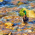 Mallard At The River - Impressions by Susie Peek
