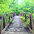Mallory Bridge by Bonfire Photography