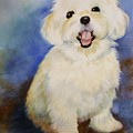 Maltese Named Ben by Marilyn Jacobson