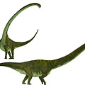 Mamenchisaurus Hochuanensis by Corey Ford