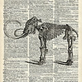 Mammoth Elephant Bones Over A Antique Dictionary Book Page by Anna W