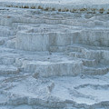 Mammoth Hot Springs Travertine Terraces One by Bob Phillips