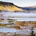 Mammoth Hot Springs by Chad Davis