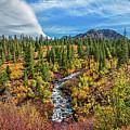 Mammoth Lakes Autumn Falls by Lynn Bauer