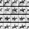 Man And Horse Jumping by Eadweard Muybridge