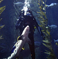 Man And Shark by Ron Javorsky