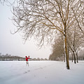 Man In Red Taking Picture Of Snowy Field And Trees by William Freebilly photography