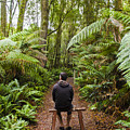 Man Relaxing In Strahan Rainforest Retreat by Jorgo Photography - Wall Art Gallery