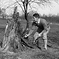 Man Retrieving Golf Ball From Tree by H. Armstrong Roberts/ClassicStock