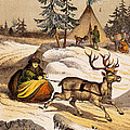 Man Riding Reindeer-drawn Sleigh by Wellcome Images