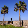 Man With A Hat On The Wall With Palm Trees In Saint Augustine Fl by Travel Back And Forth