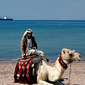 Man With Camel At Red Sea by Carl Purcell