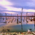 Manasquan Sunrise by Geraldine Scull