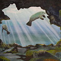 Manatee Cave by Kris Crollard