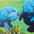 Manatee Love by Susan Kubes