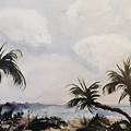 Manatee Skies by Barbara Colangelo