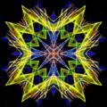 Mandala 3138 by Rafael Salazar