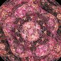 Mandala Introspective by Mary Raven