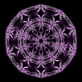 Mandala Purple And Black by Vanessa GFG