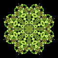 mandala - Revival-2201- 02gb by Variance Collections