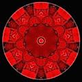 Mandala - Talisman 1542 by Marek Lutek