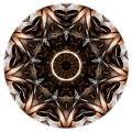 Mandala - Talisman 3705 by Marek Lutek
