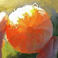 Mandarin by Curtis Chapline