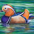 Mandarin Duck by Dee Carpenter