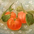 Mandarins by Angeles M Pomata