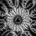 Mandelbrot Fractal Black And White by Matthias Hauser