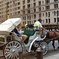 Manhattan Buggy Ride by Madeline Ellis