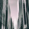 Manhattan Metropolis by Jessica Jenney