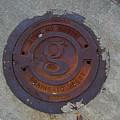 Manhole IIi by Flavia Westerwelle