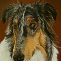 Man's Best Friend by Sheryl Gallant