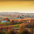 Many Farms by Dan Fearing