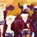 Many Moos by Ron Patterson