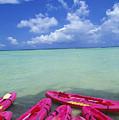 Many Pink Kayaks by Dana Edmunds - Printscapes