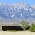 Manzanar A Blight On America 1 by Tommy Anderson