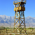 Manzanar A Blight On America 2 by Tommy Anderson