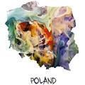 Map Of Poland Original Art by Justyna JBJart