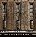 Maple Leaf Gardens by Brian Carson
