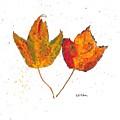 Fall Maple Leaves by Riti Pritam