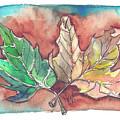 Maple Leaves by Yana Sadykova
