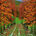 Maple Road by Frank Wilson