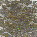 Marble Bark Colored Abstract by Bruce Pritchett