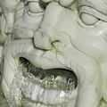 Marble Head by Ann Horn
