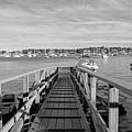 Marblehead Massachusetts Dock by Nicole Freedman