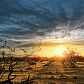March Sunrise by Lynn Geoffroy