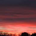 March Sunset by Sarah Avignone