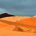Marching On Sossusvlei Dunes by Rossano Ossi